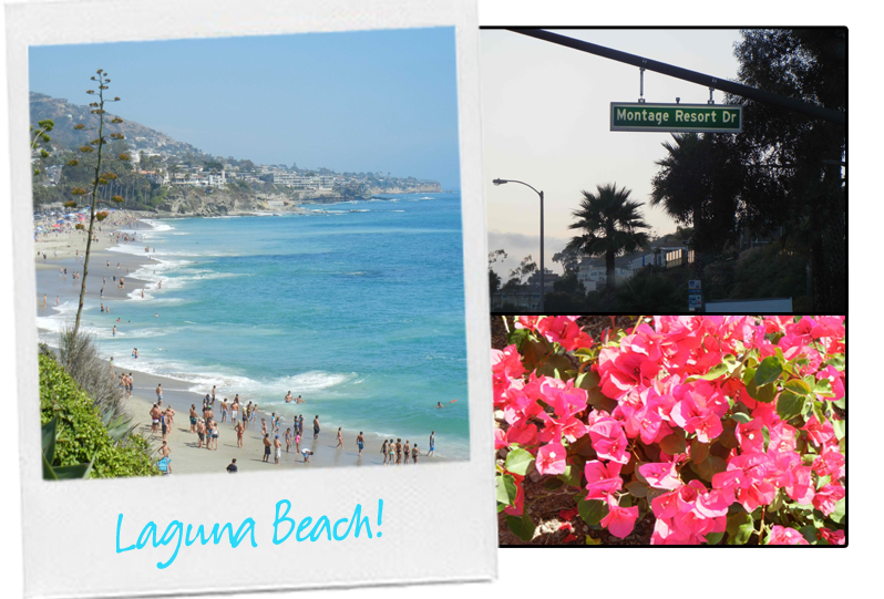 Laguna Beach, Montage, Stephanie Johnson copy